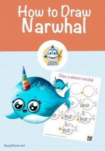 How to draw a narwhal the unicorn of the sea, step by step